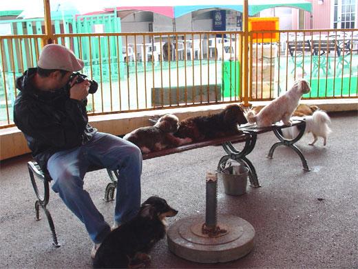 これから犬を飼おうと思う人におすすめ『那須わんわんワールド』『鹿の湯』〜那須の旅パート2〜