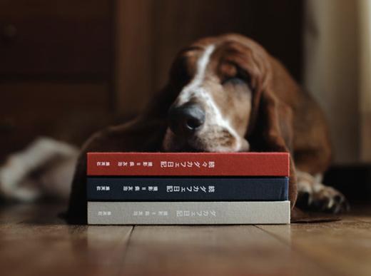 相変わらず人気のブログ「ダカフェ日記」の3冊目『続々 ダカフェ日記』が9/14に発売!写真展も開催決定!
