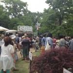 植物、古材、アンティーク、インテリア、雑貨が集まる『Go Green Market 2013』初日(6/1)行ってきました。