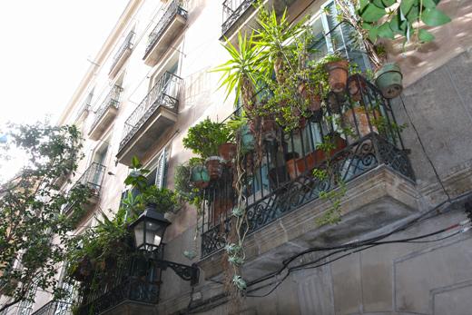 バルセロナのガーデニング